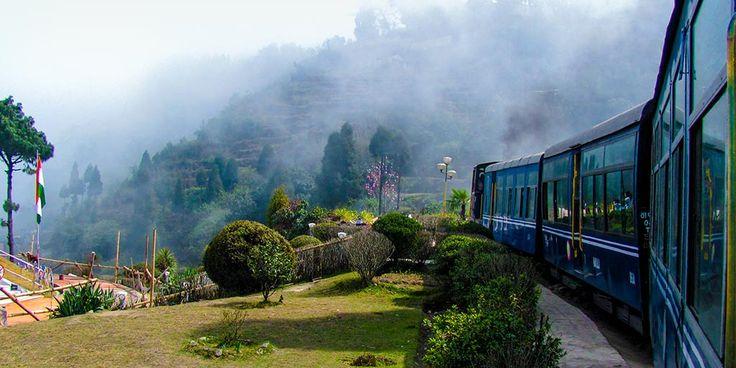 Top 5 Ways to Monkey Around Darjeeling #travel #india #guides #darjeeling #worldnomads