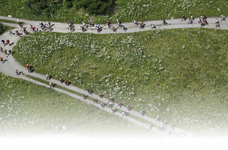 Trail Verbier Saint-Bernard