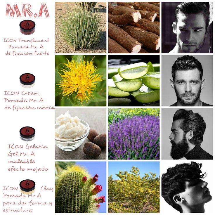 Porque #ellos también se cuidan, #ICON ha creado la línea #MRA...Chaparral, cáctus, yuca, salvia, aloe vera, candedilla, manteca de karité, aceite de cártamo, pro vitamina B5, etc son algunos de los potentes ingredientes que hace que sus productos de fijación alcancen la excelencia: ICON Mr. A. Clay Pomada:  Arcilla, da forma y estructura al cabello. Se puede aplicar con el cabello seco o húmedo. Mantiene la forma de tu cabello con flexibilidad...