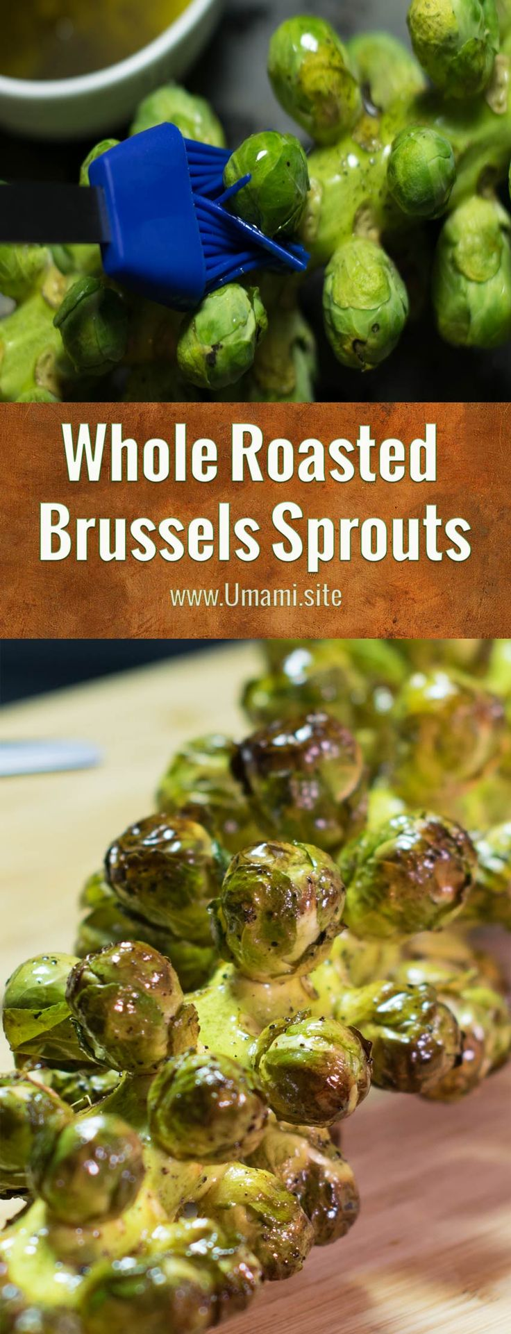 A simple way to create an eye-popping presentation is to serve roasted Brussels sprouts still on the stalk. The secret to this roasted Brussel sprouts recipe is how olive oil, lemon juice, and honey add flavor as the sprouts roast.