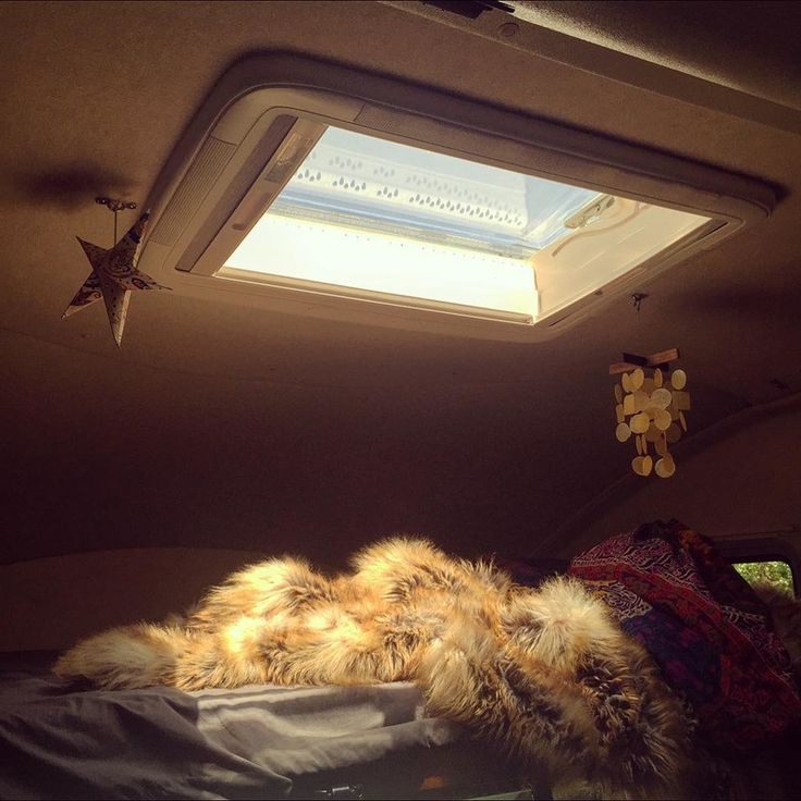17 Best Images About Van Conversions Ceiling On