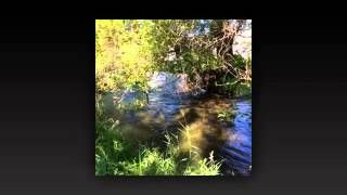 Century21Okanagan - YouTube