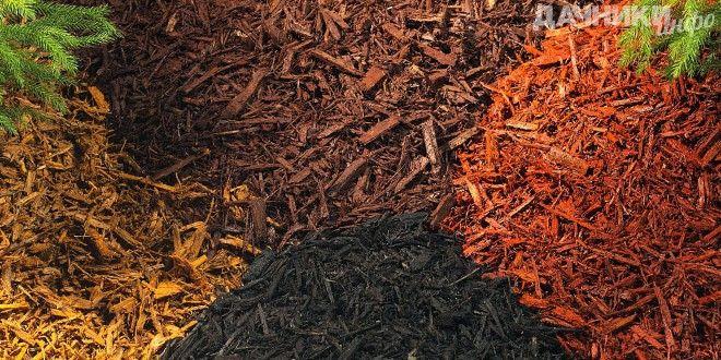 Мульчирование почвы - Подробности: http://dachniki.info/mulchirovanie-pochvy-3385.html