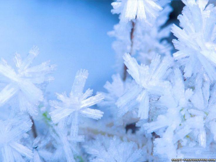 snowflakes..^