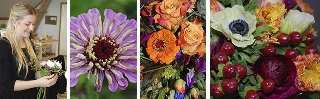 http://www.handelsfagskolen.dk/elevuddannelse-10/detailhandel/blomsterdekorator/om-uddannelsen.aspx