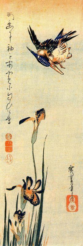 """Утагава Хиросигэ. Зимородок и ирисы. Серия """"Птицы и цветы"""""""