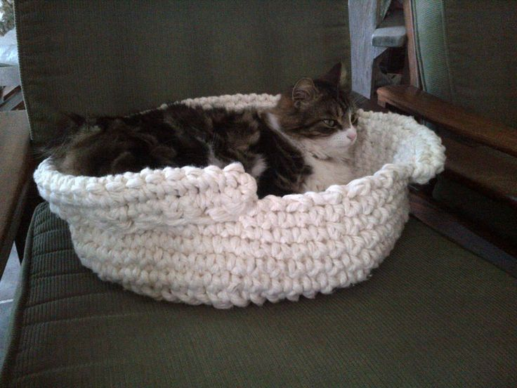 love your cat? handmade by Maggie Jo basket, available @ A Hilltop Country Retreat, Swellendam. or visit her facebook page
