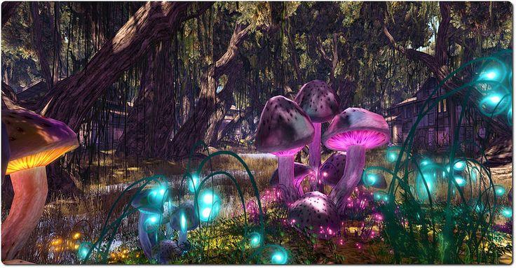 Fantasy Faire 2014-2