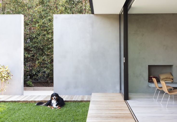 Concrete and glass shelter with indoor-outdoor Aussie lifestyle