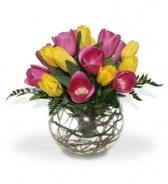 Tulipanes en 2 colores, pecera redonda de cristal y follajes. Ideal para regalar en cualquier ocasión.