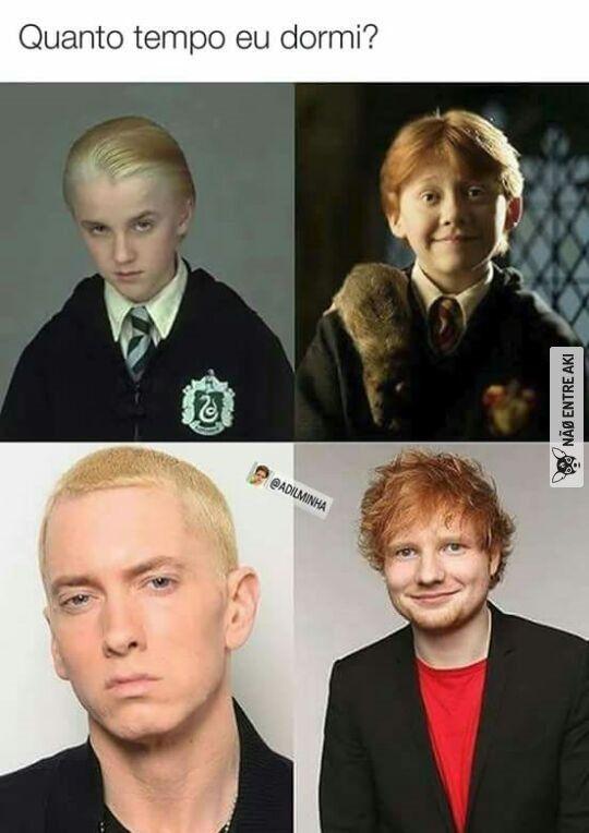 Acho que hibernei pra nao saber sobre esse fato... Mas acho que o lord Voldemort regrediu psra hello kitty
