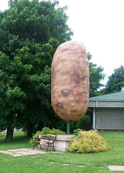 Canadian Potato Museum: Giant Potato Page