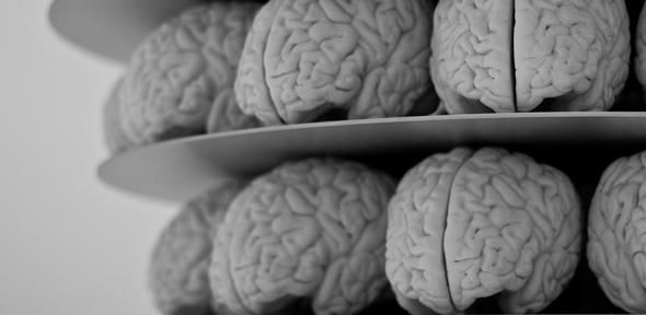 Opinion: The science, drugs and tech pushing our brains to new limits | University of Cambridge #smart #neuroscience