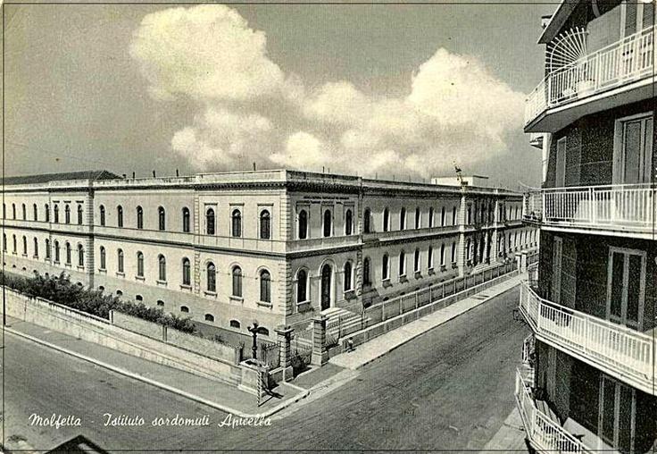 Istituto Apicella
