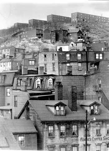 Pittsburgh's Hill District as it appeared in 1951. The view is up Forbes Avenue from Soho.  The then-new Terrace Village housing on the hilltop contrasts with older houses below.  This is where my Grandparents lived when they arrived from Italy but were forced to move by the city as they expanded the public housing projects.