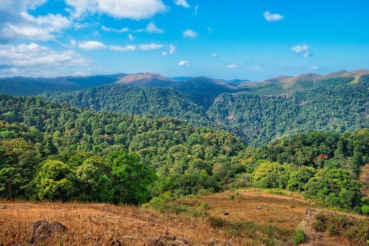 https://flic.kr/p/p4tT6a   Periyar National Park and Wildlife Sactuary in Kerala, India