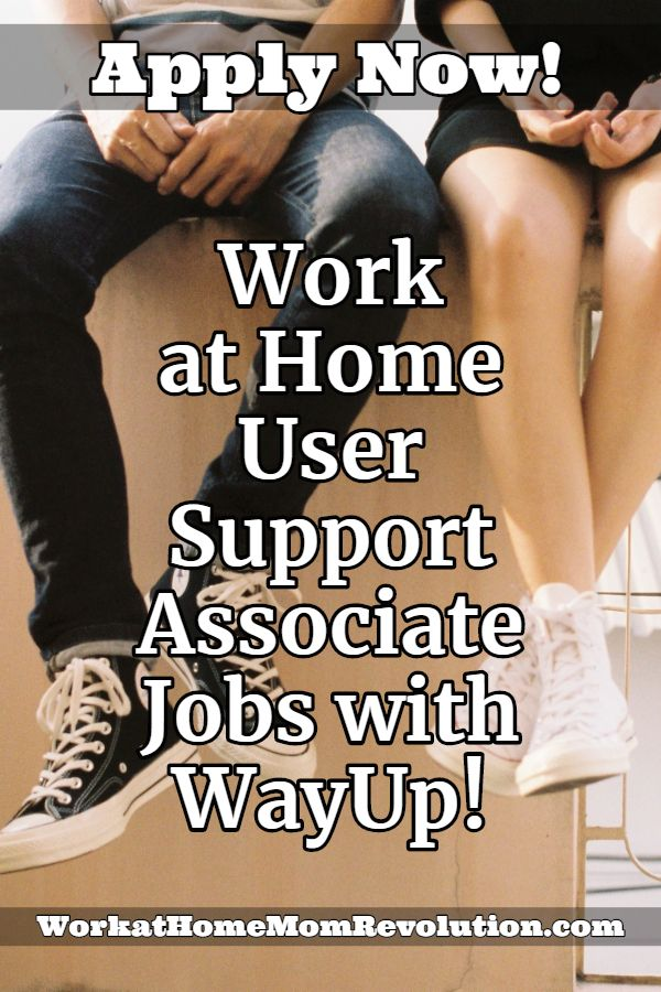 Work at Home User Support Associate Jobs with WayUp