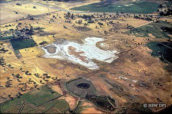 Salt scald from the air, NSW