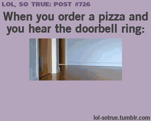 """Im probably the Cat at the front Me: """"O SHIET THE PIZZA IS HEREEE :D *Crashes into walls* XD"""