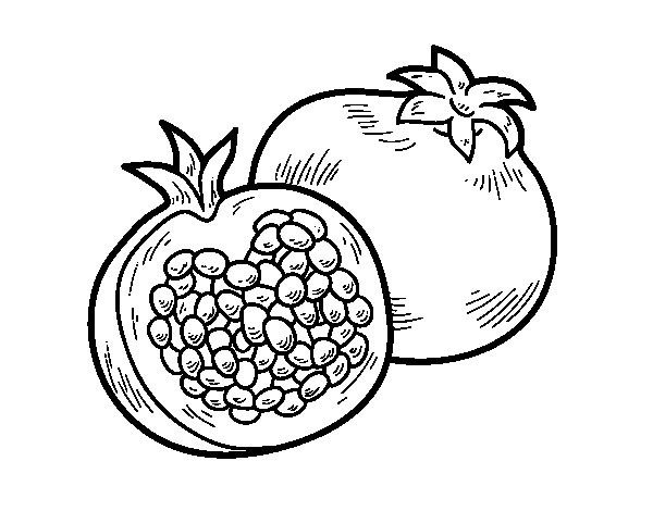 Pomegranate Coloring Page Coloring Pages Pomegranate Color