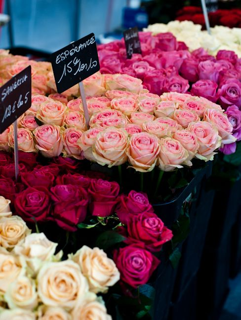French Flower Market - Paris