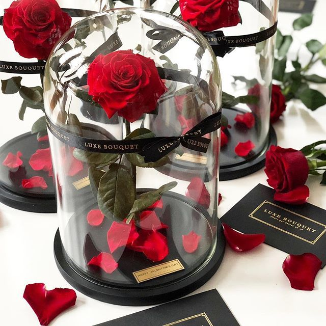 Shop Real Luxury Roses That Last A Year Browse Our Collection Of Long Lasting Roses Including Our Beauty And The Beast Inspired Ev Forever Rose Rose Dome Rose