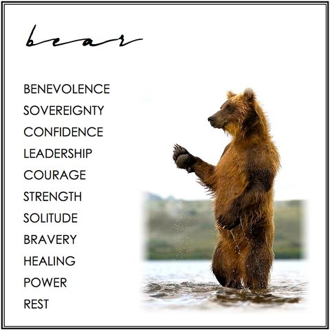 Bear Meaning, Bear Symbolism by THE RAVE N IRON