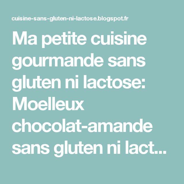 Ma petite cuisine gourmande sans gluten ni lactose: Moelleux chocolat-amande sans gluten ni lactose à la farine de riz Exquidia
