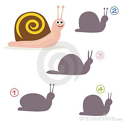 shape-game-snail