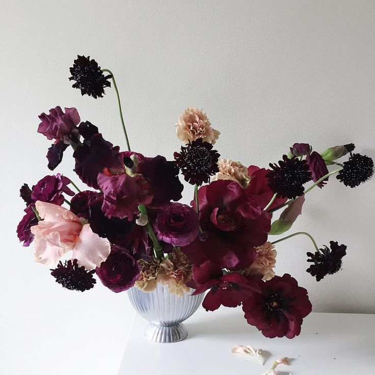 Scabiosa, ranunculus, carnation and bearded iris