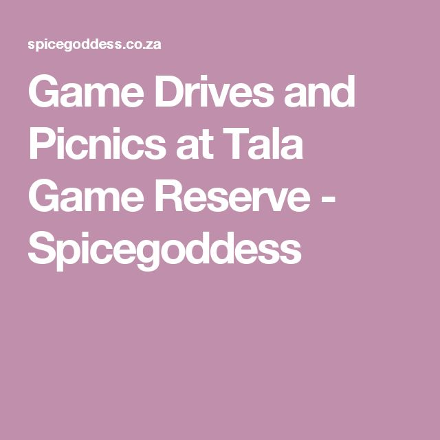 Game Drives and Picnics at Tala Game Reserve - Spicegoddess