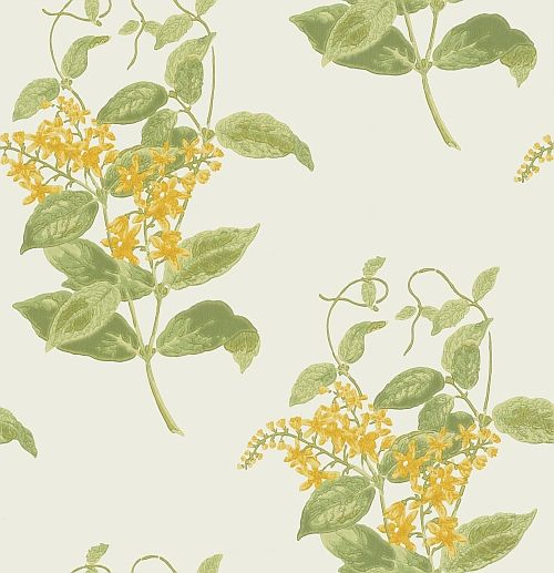 Madras Violet  Yellow wallpaper by Cole & Son