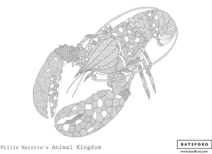 BMillie Marotta B Lobster Coloring BooksAdult