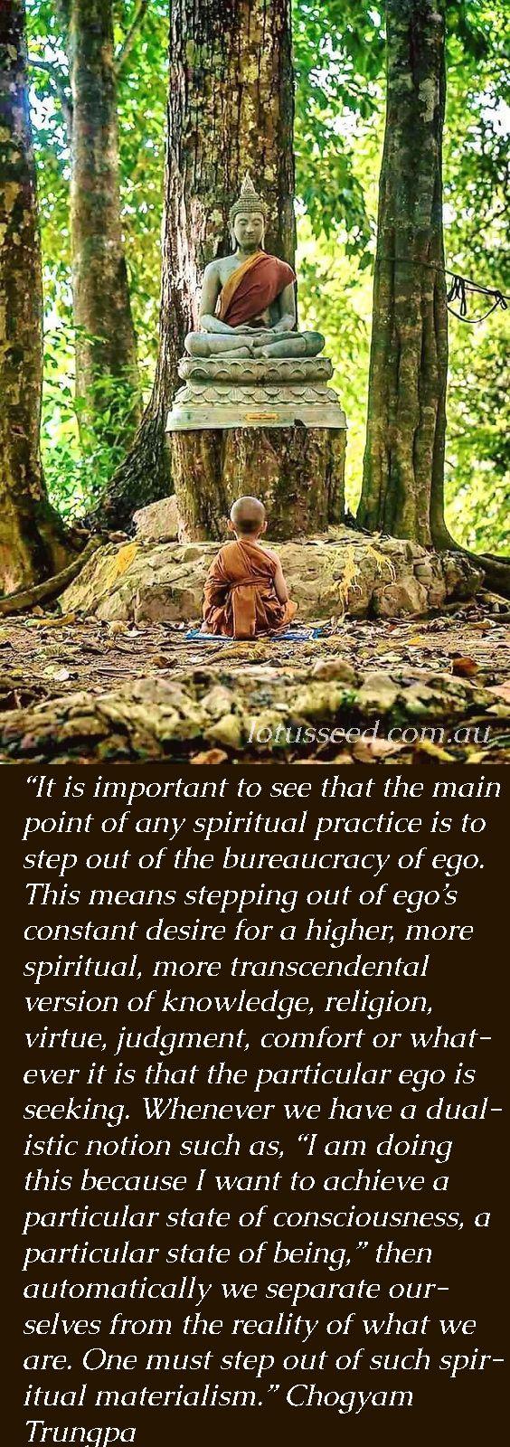 Chogyam Trungpa Buddhism Zen quotes by lotusseed.com.au
