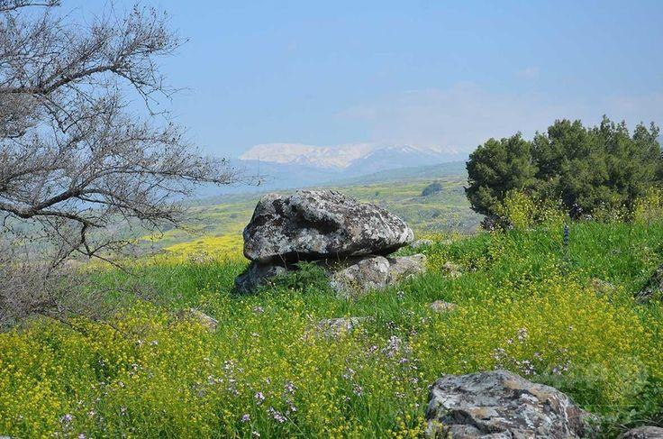 約4000年前の中期青銅器時代に造られたとされるドルメン。Gonen Sharon, Tel Hai College提供(撮影日不明、3月6日提供)。(c)Gonen Sharon, Tel Hai College ▼6Mar2017AFP|青銅器時代の「謎めいた」巨石建造物、イスラエルで発見 http://www.afpbb.com/articles/-/3120247 #Dolmen #דולמן #Galilee #הגליל #加利利 #الجليل