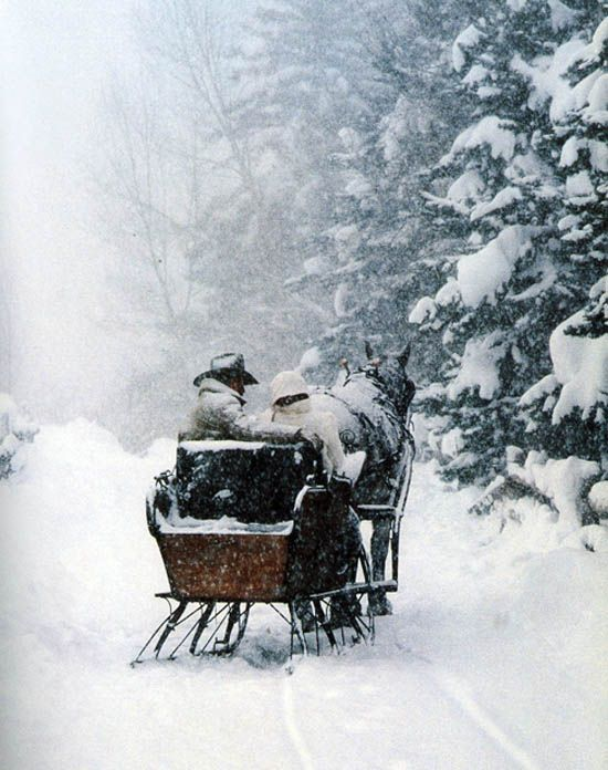 This is on my bucket list!  For years have wanted to take a sleigh ride drawn by a horse in the snow and beautiful pine trees.