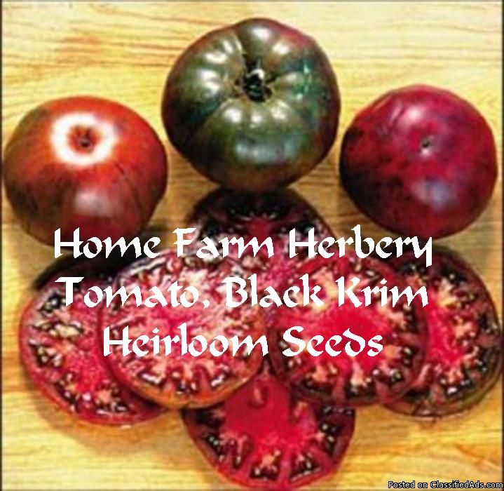 Tomato, Black Krim Seeds, Order now, FREE shipping  (100% Heirloom/Non-Hybrid/Non-GMO)     The Black Krim tomato produces high yields of dark reddish/black beefsteak tomatoes. This is a popular and rare heirloom tomato variety from the Black Sea region of Russia.     Amazingly rich in flavor- Skin turns to a reddish black color as it matures - Interior is dark reddish green - Very sweet - Excellent when eaten right off the vine, used for salads or sandwiches - Easy to grow and look...