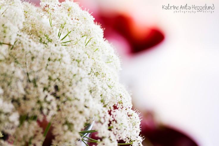 Skvalderkål, blomster, ugress, flower, weeds, summer, garden, hage, Katrine Anitas magiske verden