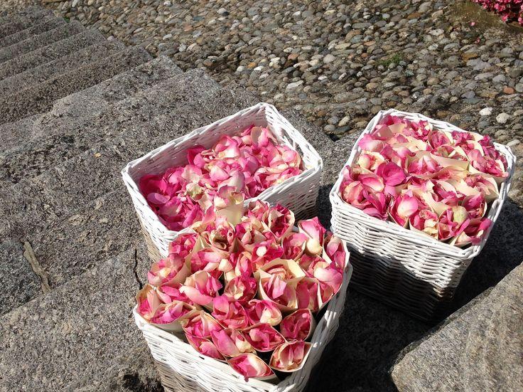 #wedding #flowerdesign #allestimenti #sposi #ilsalottodeiconsigli #giardinigalbiati #itssevent #evento #futurisposi #rose