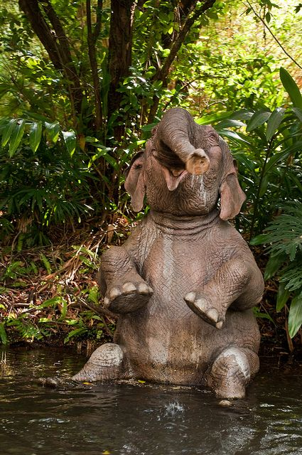 "joyful elephant bath: ""Jungle Cruise"" by Brian Walter 2011-04 Lake Reams, Windermere, FL, US as Christopher Lane @ Flickr 6422979553"