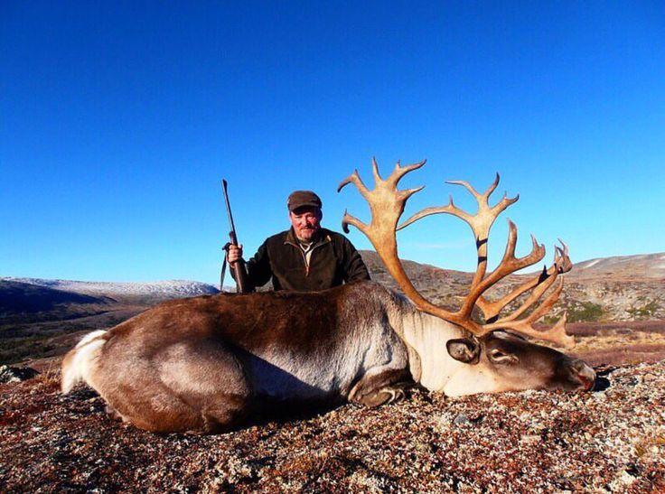 Thinking of a Caribou hunt? Check out North River Stone. #DreamSportingTrips