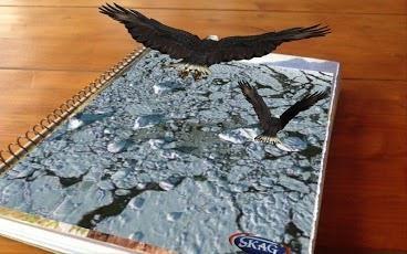 Te distrezi, te relaxezi, te bucuri de lumea ta virtuală. Caiete cu spiră metalică, copertă din carton, 2 subiecte, tip: dictando, 60 file, format A4.  Model Vultur http://www.rechizitelemele.ro/caiete-cu-aplicatie-ar-skag