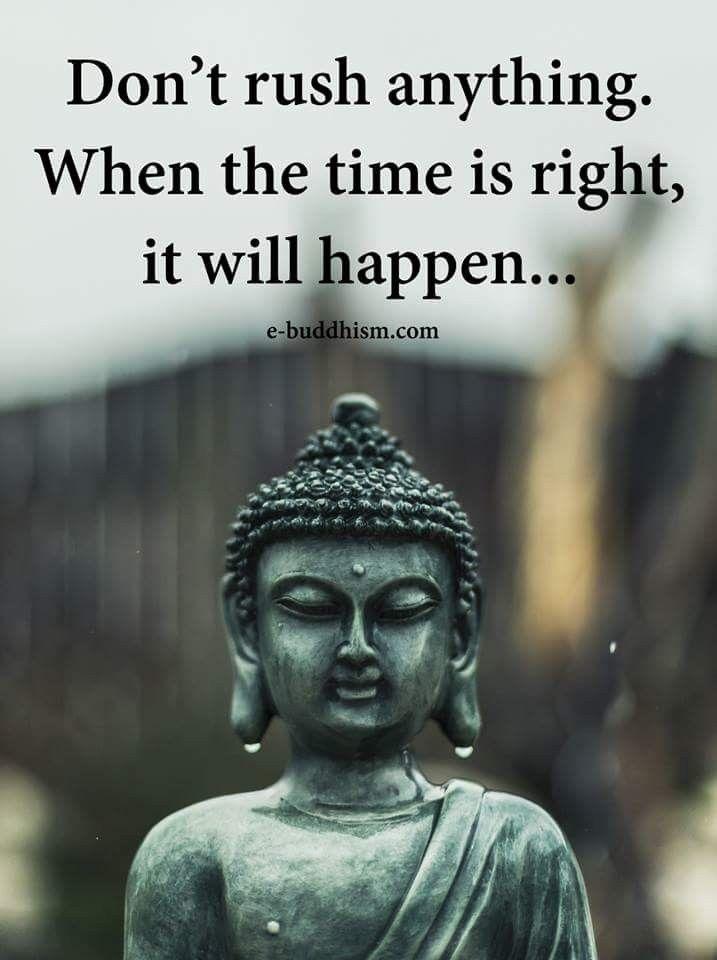 Hmm I Hope So Quotes Pinterest Inspirational Quotes Buddha