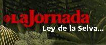 CNDH y AI indagan ataque a jornaleros de San Quintín — La Jornada