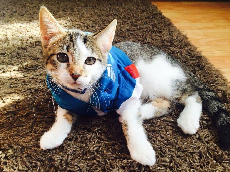 Elvis as Captain America