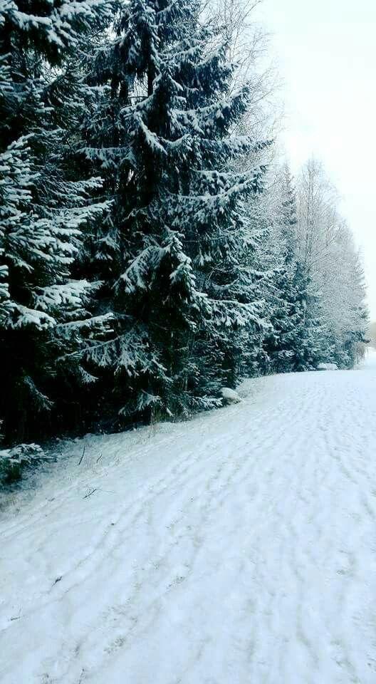 Ihanaa lunta lenkkipolulla.