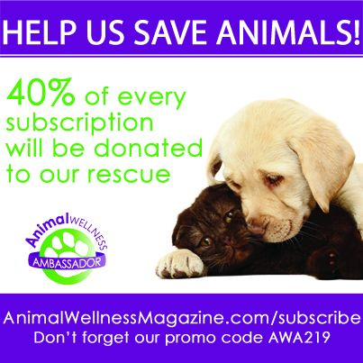 subscribe to animal wellness using our unique code AWA219 and HTR receives 40% of the subscription fee https://animalwellnessmagazine.com/sub2013/subscribe.php   #animalwellness #happytailsrescue #htr #smallbreedrescue #donate