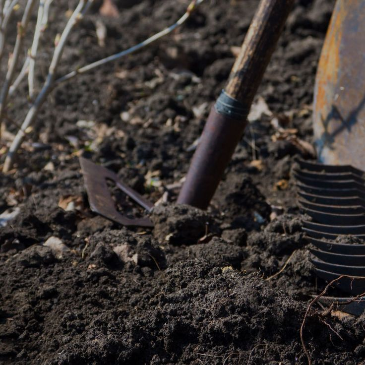 167 best compost soil recycle images on pinterest for Potting medium crossword clue