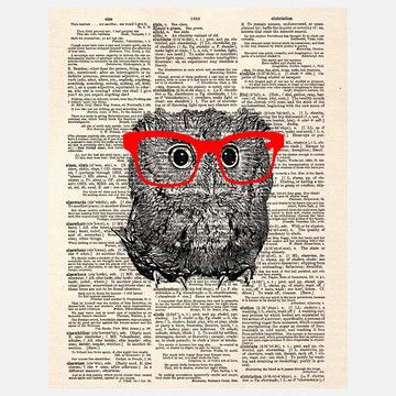 I love these little owl pics......My design inspiration: Smarty Pants Owl Canvas on Fab.