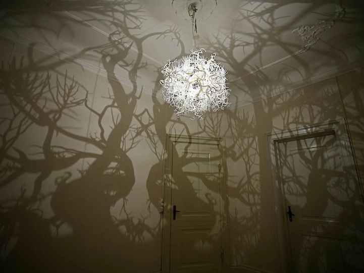 chandelier casts shadows of trees, a whole forest